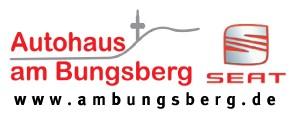 VfB Lübeck – Sponsoren – Autohaus am Bungsberg