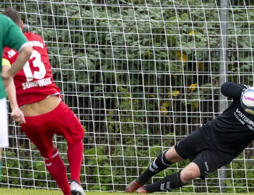 U23 mit Punktgewinn gegen Flensburg